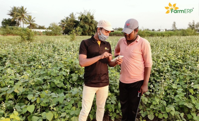 Field Officer advising a Smallholder Vegetable Farmer on suitable agricultural practices