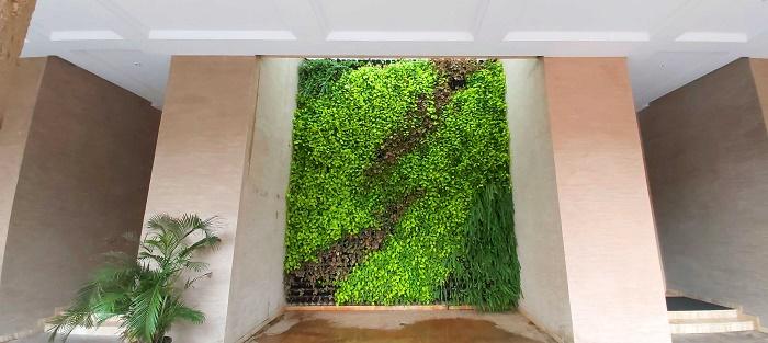 Green Wall at Adonia Hiranandani Garden Powai