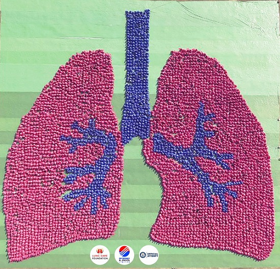 Lung Care Foundation & Petronet LNG Awarded with Guinness World Record of Creating the 'Largest Human Image of an Organ (Lung)'