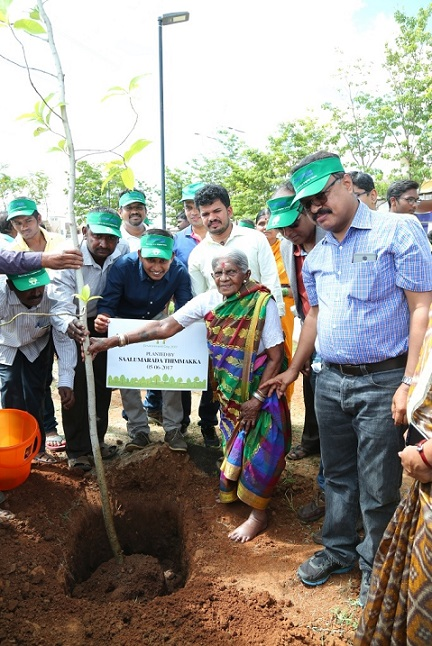 Saalumarada Thimmakka along with the team at Napa Valley planting a sapling