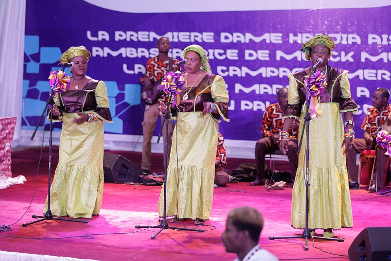 Cultural dance and music performance during the event in Niger